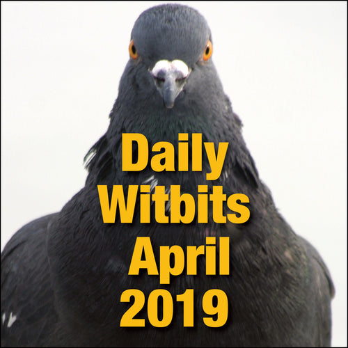 Daily Witbits For April 2019