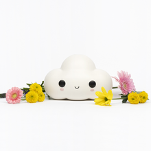 Load image into Gallery viewer, FRIENDSWITHYOU - LITTLE CLOUD X CASE STUDYO