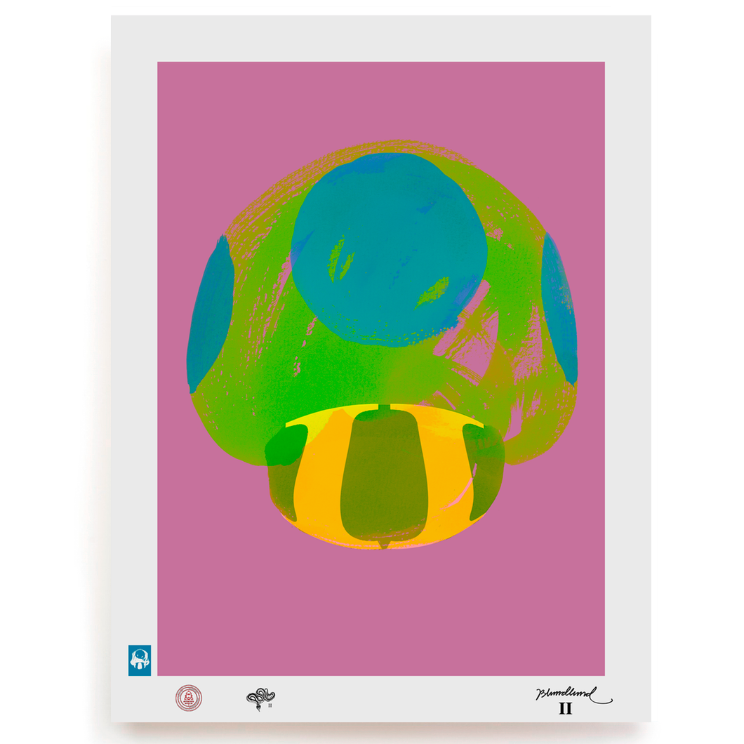 BLUNDLUND.CO.,LTD FINE ART PRINT - NIJCE GREEN PINK / LIMITED EDITION OF 250