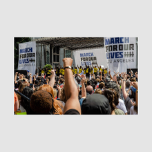 Load image into Gallery viewer, TISH LAMPERT - WE PROTEST, FIGHTING FOR WHAT WE BELIEVE IN / RIZZOLI