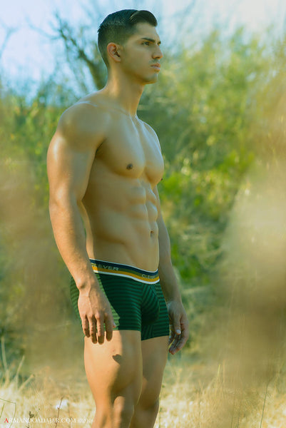 2265 Forbidden Desire Boxer Color Green