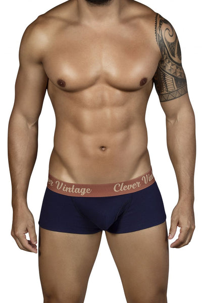 2316 Old School Open Fly Boxer Briefs Color Blue