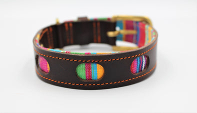Handmade Dark Brown Leather Dog Collar with lovely Rainbow Colours