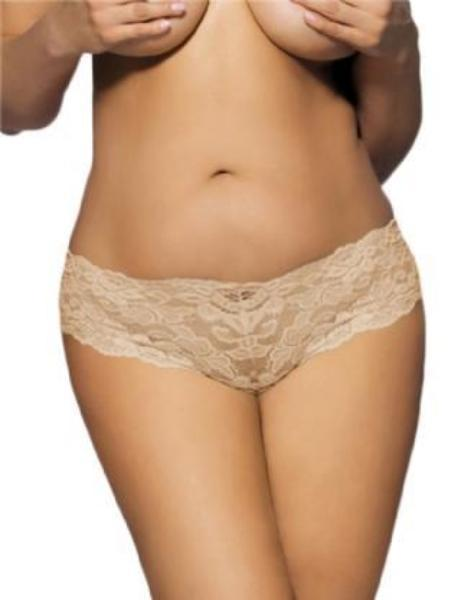 2baacef010d Tamie Lace Briefs - SIZE 18 to 24 LEFT