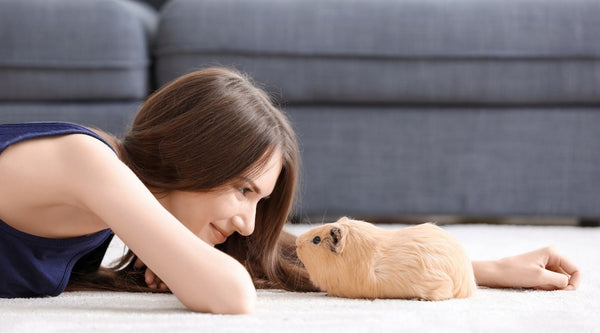 woman laying on floor playing with guinea pig on carpet