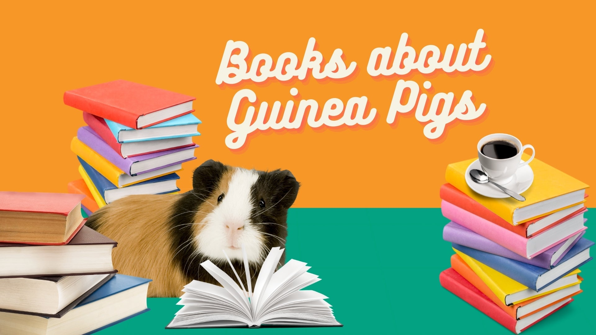 Fictional books and stories about guinea pigs kavee blog usa