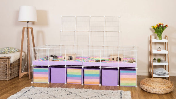 white 6x2 C&C cage with a lid stand and storage space with lilac correx rainbow storage boxes in modern living room