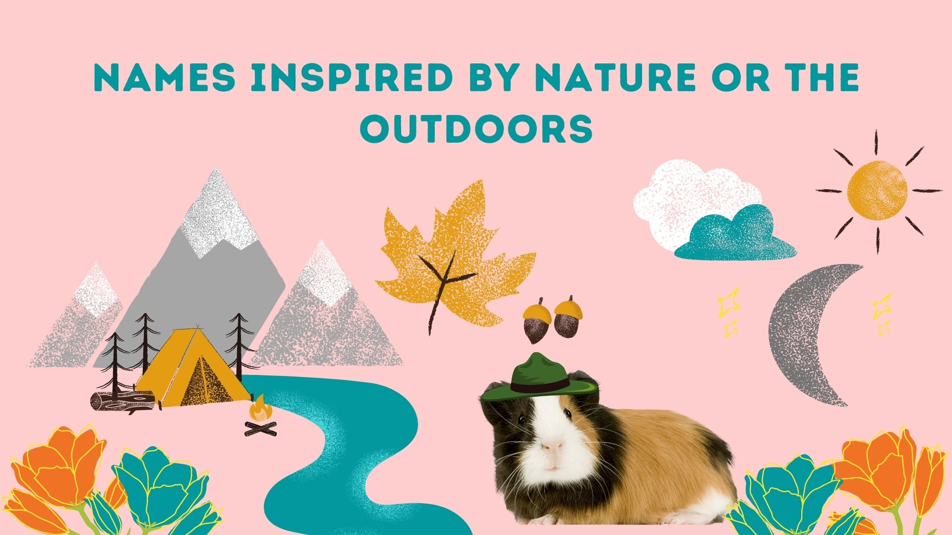 Names inspired for nature and the outdoors for guinea pigs kavee blog usa