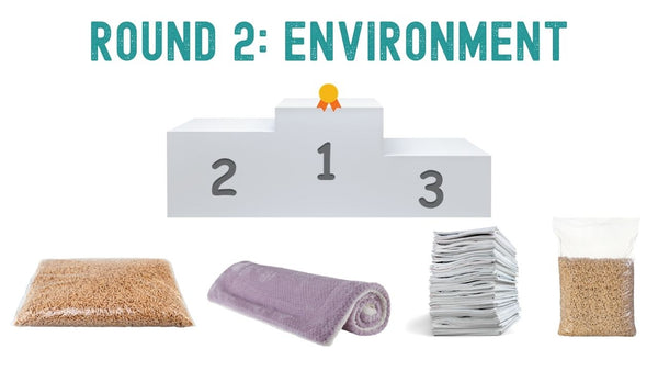 what is the best guinea pig bedding for the environment