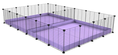 6x4 c and c cage for guinea pigs that are fighting