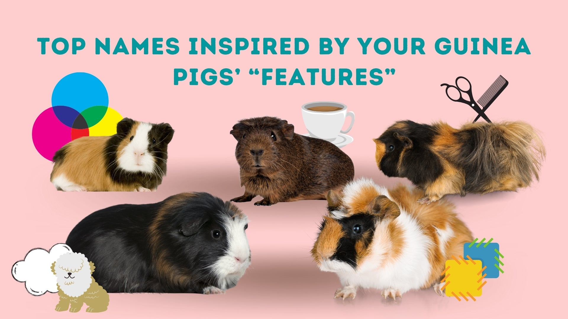 Top names inspired by your guinea pigs features kavee blog usa