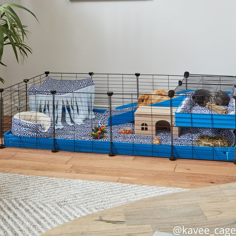 Kavee 4x2 C and C cage with loft for two guinea pigs kavee blog uk