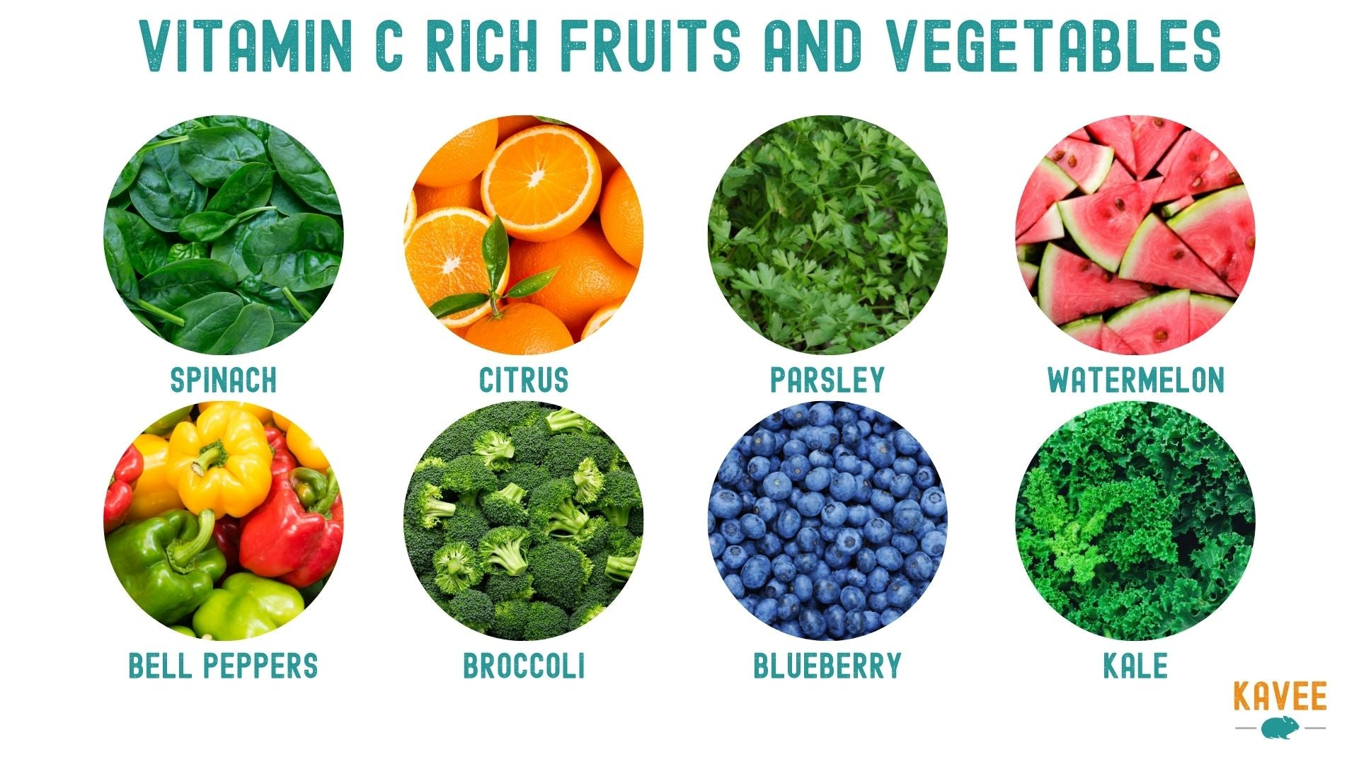chart of fruits and vegetables rich in vitamin c for guinea pigs spinach citrus parsley watermelon bell peppers broccoli blueberries and kale