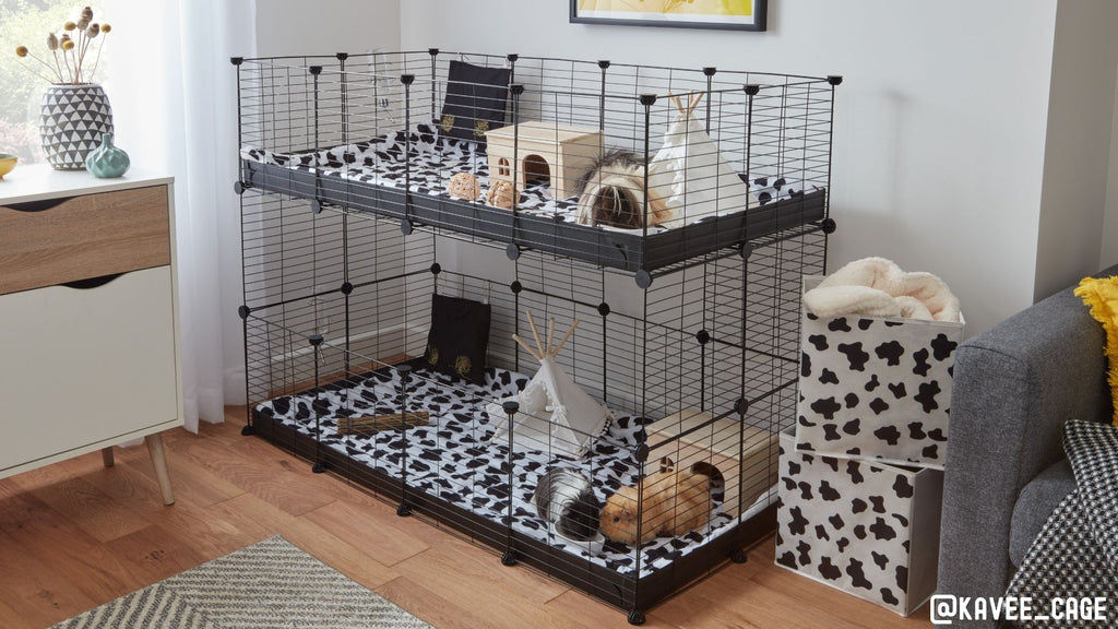 example on how to separate male and female guinea pigs 4x2 C&C cage double stacked two tiered setup