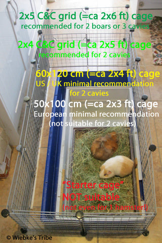 taille cage cochon d'inde cavy cage kavee france