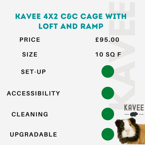 Kavee 4x2 C and C cage  with loft and ramp for guinea pigs kavee blog uk