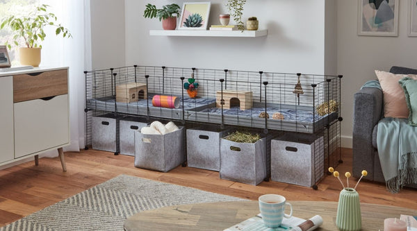 6x2 C&C cage with a stand and storage boxes for guinea pigs in modern home