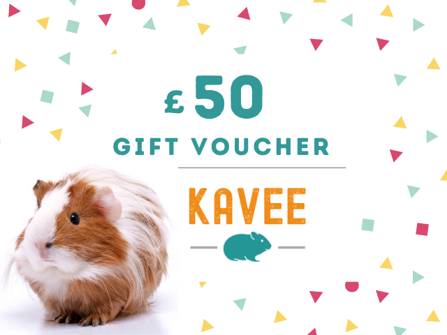 gift card kavee C&C cage c and c cage cc cage guinea pig 50 pounds