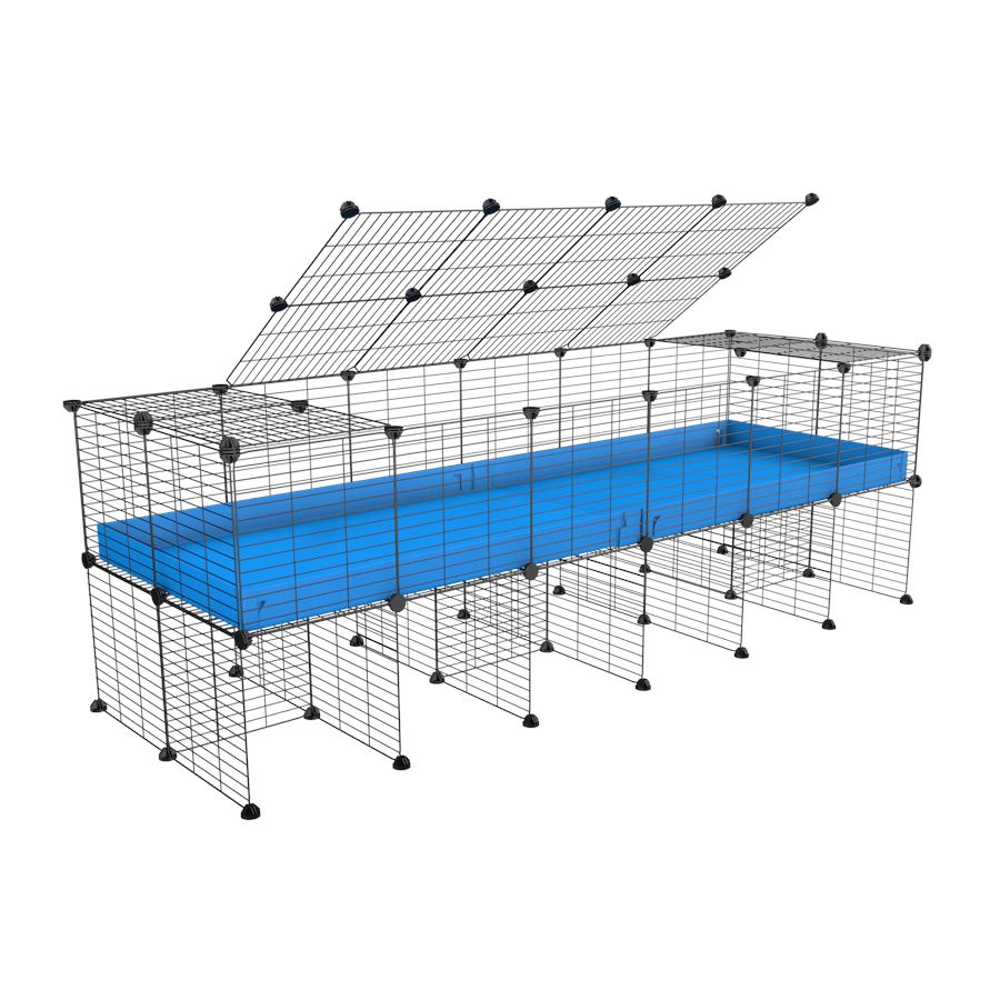 a 6x2 C&C cage for guinea pigs with a stand and a top blue plastic safe grids by kavee