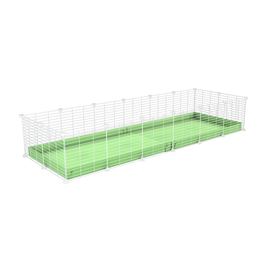 A cheap 6x2 C&C cage for guinea pig with green pastel pistachio coroplast and baby proof white grids from brand kavee