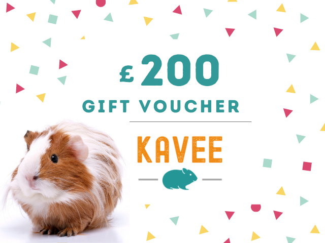 gift card kavee C&C cage c and c cage cc cage guinea pig 200 pounds