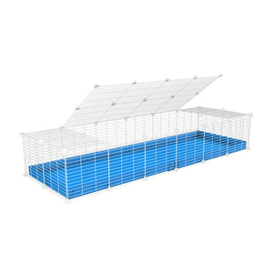 A 2x6 C and C cage for guinea pigs with blue coroplast a lid and small hole white C&C grids from brand kavee