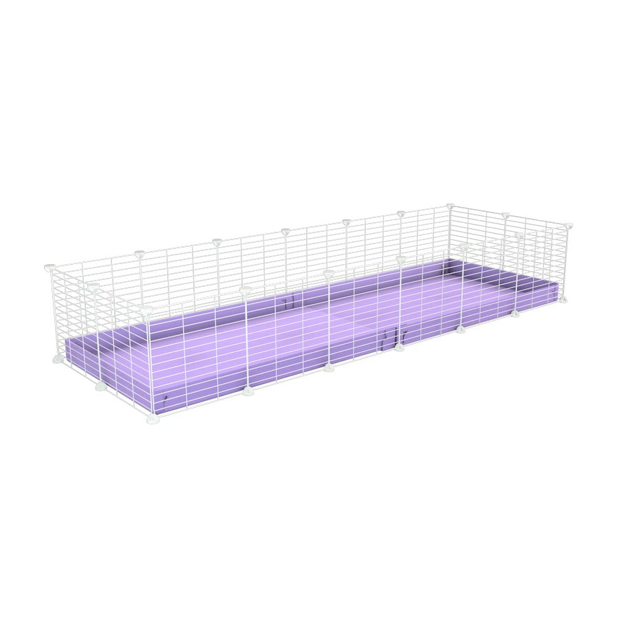 A cheap 6x2 C&C cage for guinea pig with purple lilac pastel coroplast and baby proof white grids from brand kavee