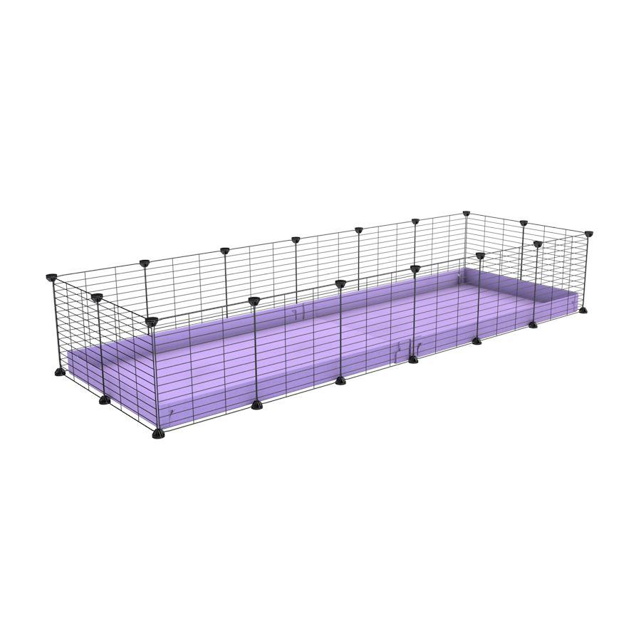 A cheap 6x2 C&C cage for guinea pig with purple lilac pastel coroplast and baby grids from brand kavee