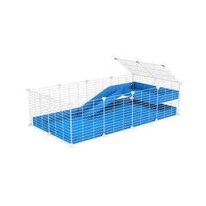 a 4x2 C&C guinea pig cage with a loft and a ramp blue coroplast sheet and baby bars white C and C grids by kavee