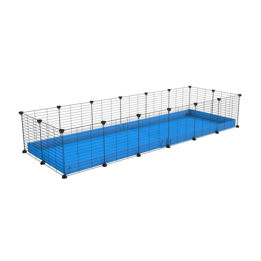 A cheap 6x2 C&C cage for guinea pig with blue coroplast and baby grids from brand kavee