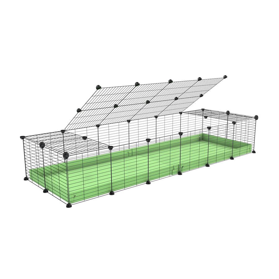 A 2x6 C and C cage for guinea pigs with green pastel pistachio coroplast a lid and small hole grids from brand kavee