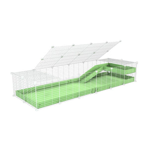 a 2x6 C and C guinea pig cage with loft ramp lid small hole size white grids green pastel pistachio coroplast kavee