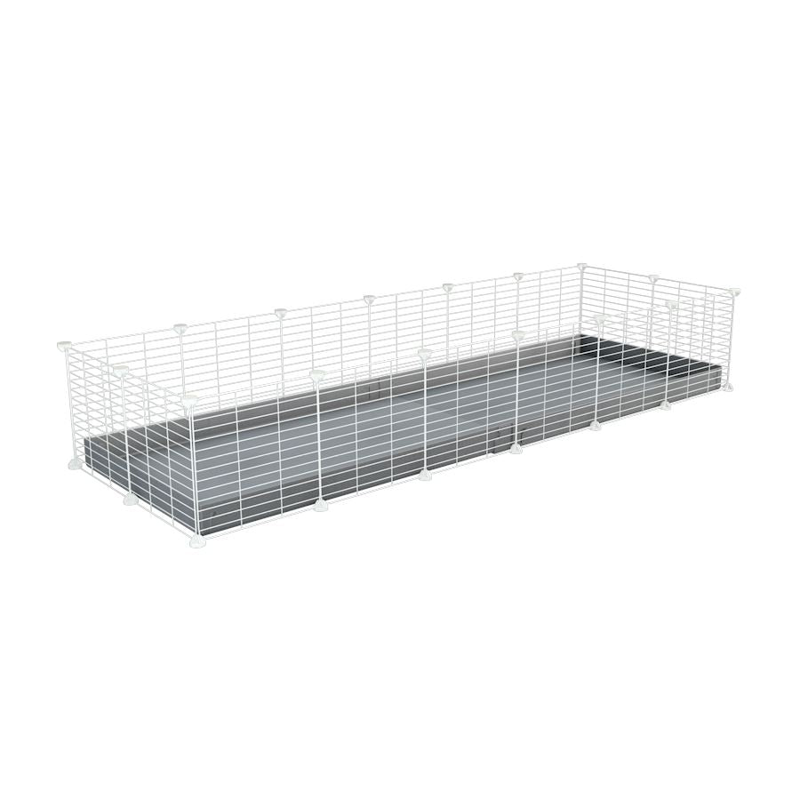 A cheap 6x2 C&C cage for guinea pig with grey coroplast and baby proof white grids from brand kavee