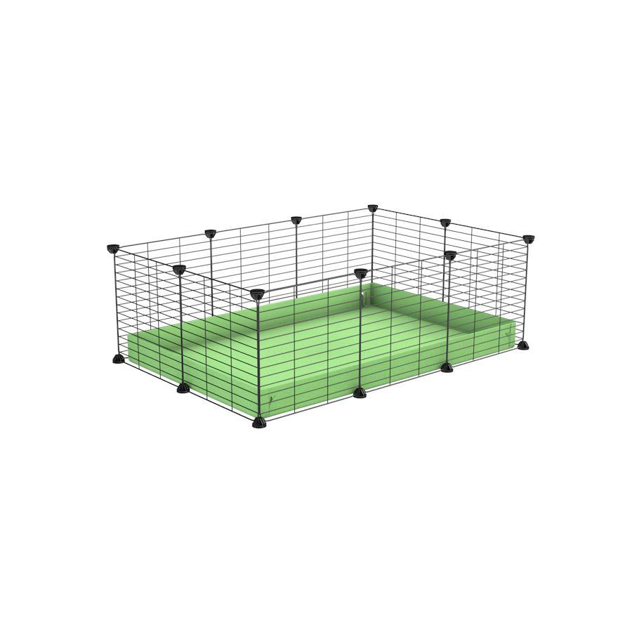 A cheap 3x2 C&C cage for guinea pig with green pastel pistacchio coroplast and baby proof grids from brand kavee