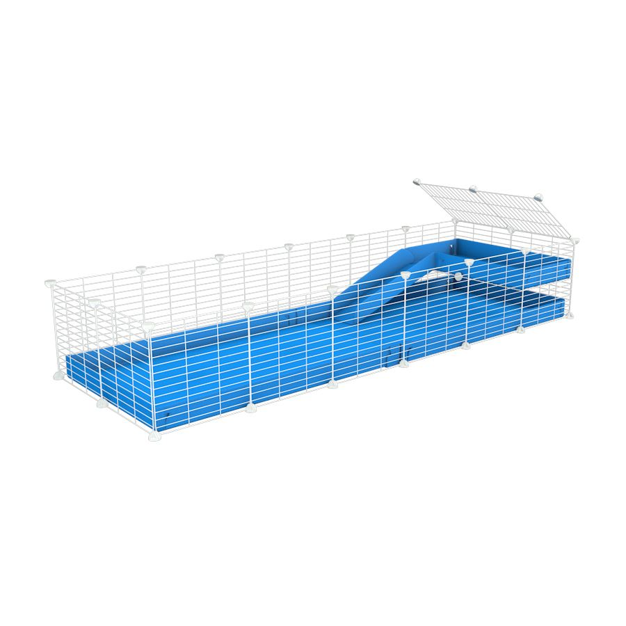 a 6x2 C&C guinea pig cage with a loft and a ramp blue coroplast sheet and baby bars white grids by kavee