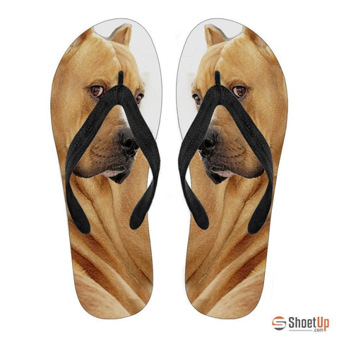 Pitbull Flip Flops For Women-Free Shipping