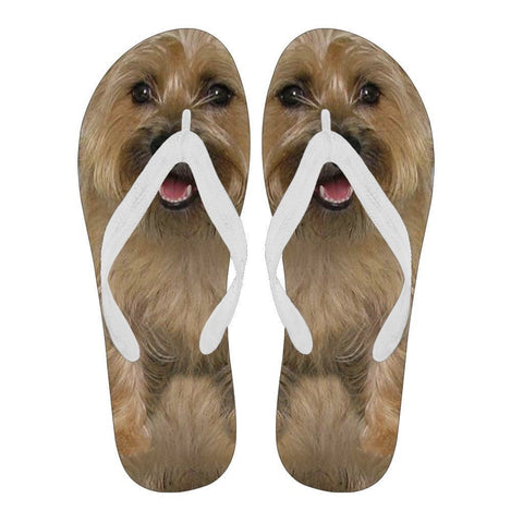 Cairn Terrier Flip Flops For Men-Free Shipping