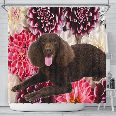 Cute American Water Spaniel Print Shower Curtains-Free Shipping