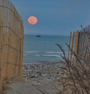 Full Moon rising at the Beach