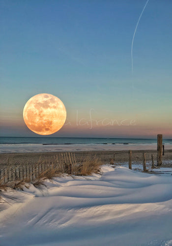 Super Moon Beach Print