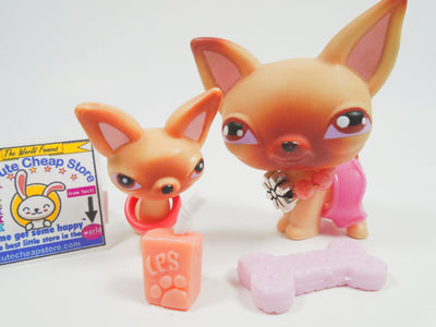 Littlest Pet Shop Mommy and Baby Chihuahua #1 with accessories - My Cute Cheap Store
