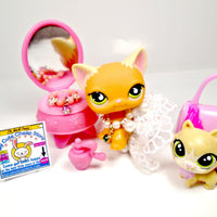 Littlest Pet Shop Shorthair cat #525 with accessories - My Cute Cheap Store