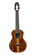 Ukelele SPIRIT FLIGHT ukulele