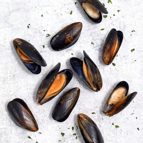 Fully Cooked Blue Mussels - Panapesca - Fully Cooked Blue Mussels - Panapesca