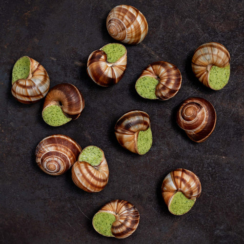 Escargots - White Toque