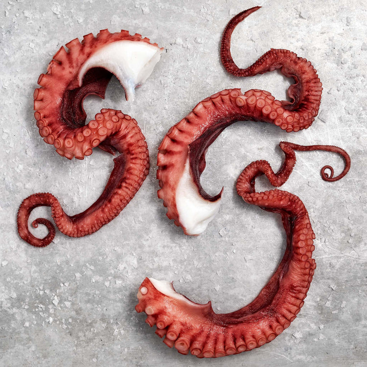 Fully Cooked Octopus Tentacles - Fully Cooked Wild Caught Octopus Tentacles