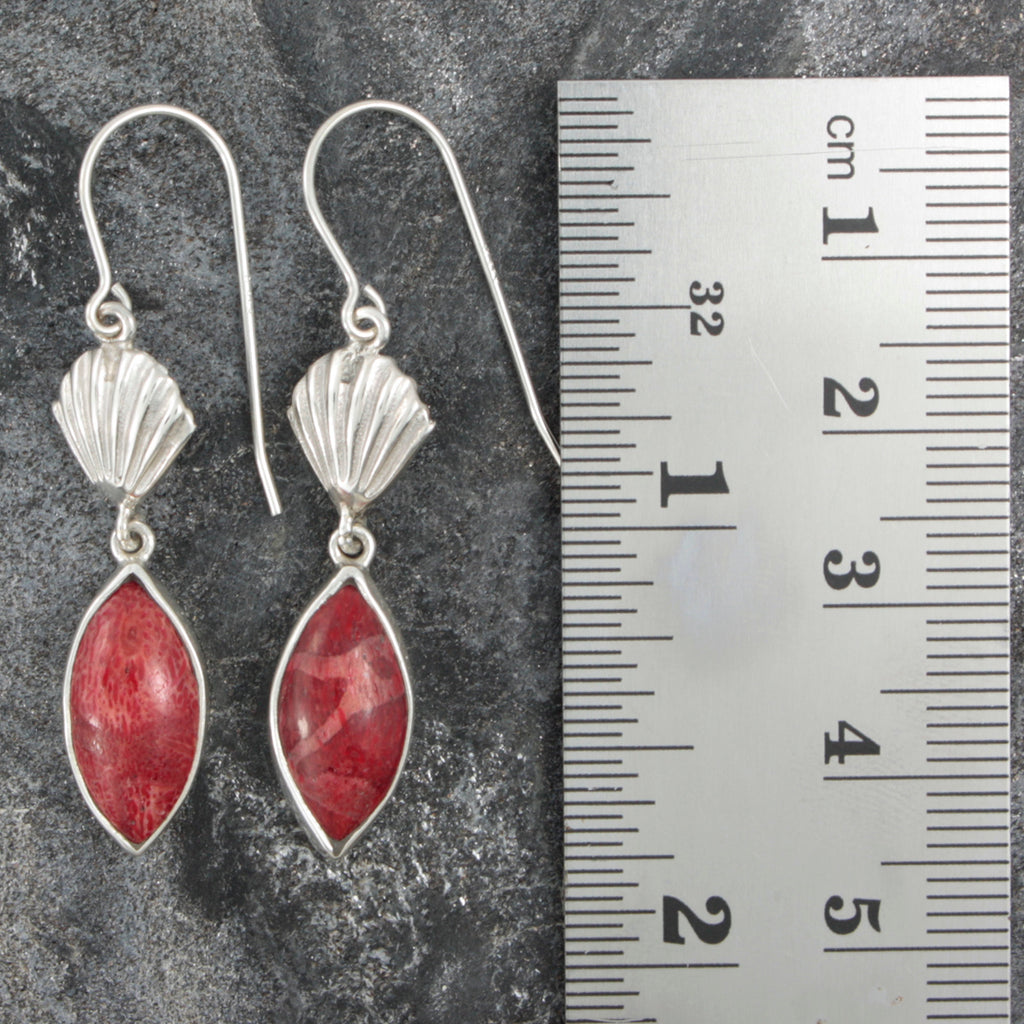 Bring home the beach-Silver Sea Shell and Sponge Coral Earring