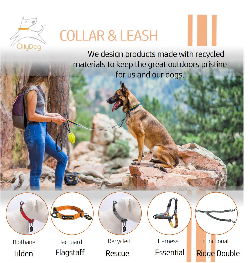 Mountain Leash
