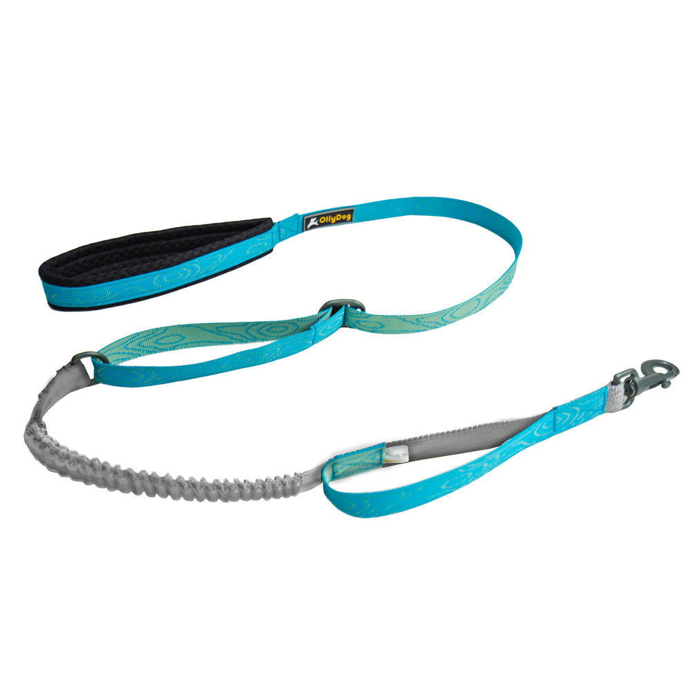 Flagstaff Adjustable Spring Leash - Sky Bark