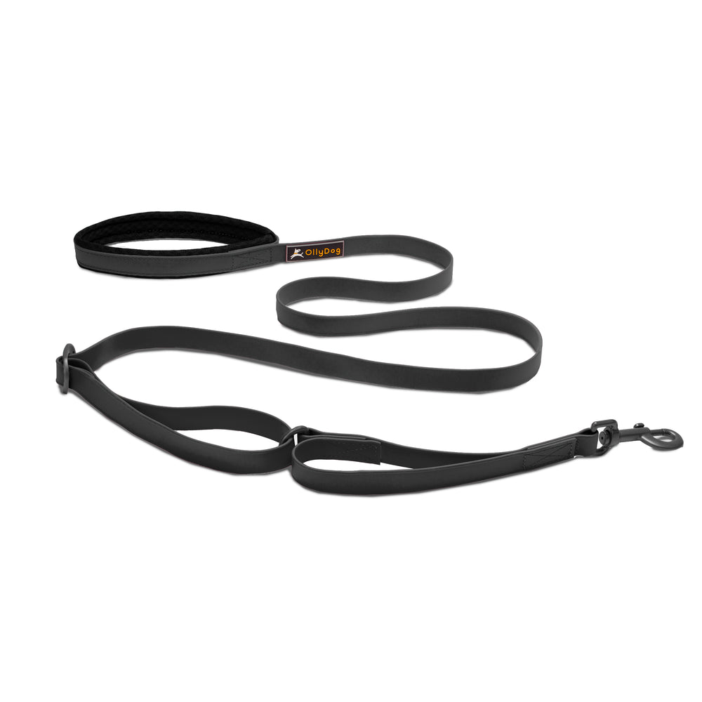 Tilden Waterproof Leash